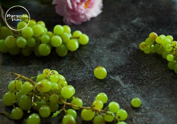 viinirypaleet-0221.JPG