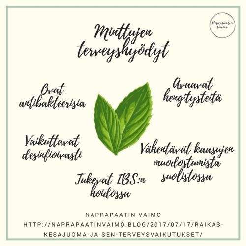 minttu_terveys