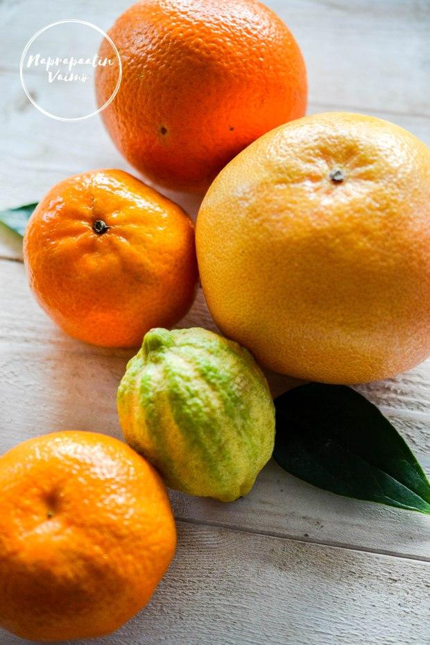 appelsiinisalaatti-0096.jpg